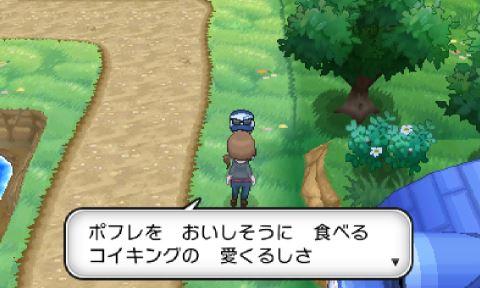 pokemonxy10-13