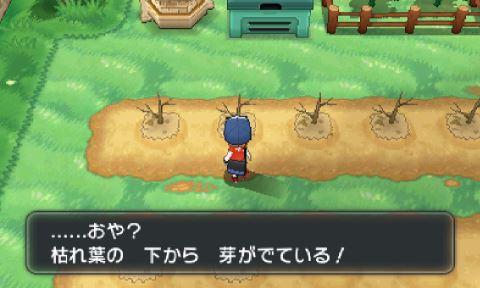 pokemonxy11-04