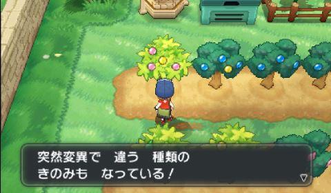pokemonxy14-03