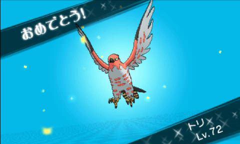 pokemonxy18-23_mini